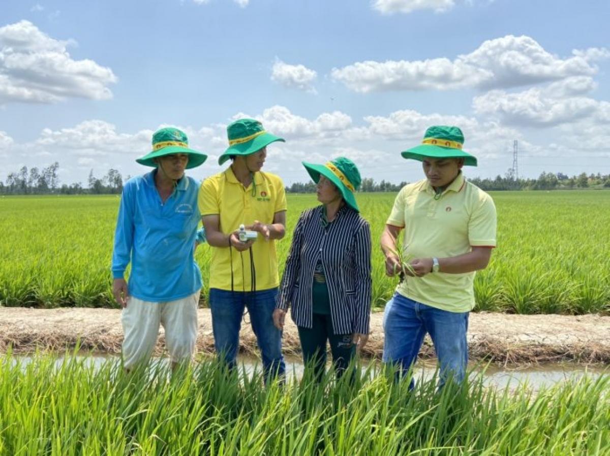 Cục trưởng Cục BVTV Hoàng Trung nhấn mạnh, việc giá phân bón tuy có ảnh hưởng tới sản xuất nông nghiệp, nhưng không đến mức vì giá phân bón tăng mà dẫn tới định trệ hay phải dừng sản xuất. Ảnh: DCM.