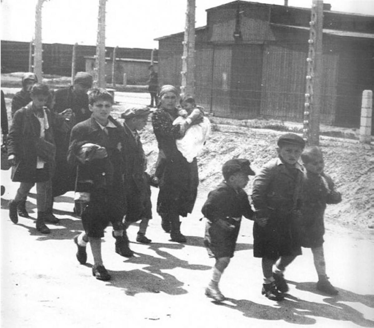 Những trẻ em Do Thái tại trại tập trung Auschwitz nắm tay nhau và bước đi mà không biết được rằng phòng hơi độc đang chờ các em ở phía trước.