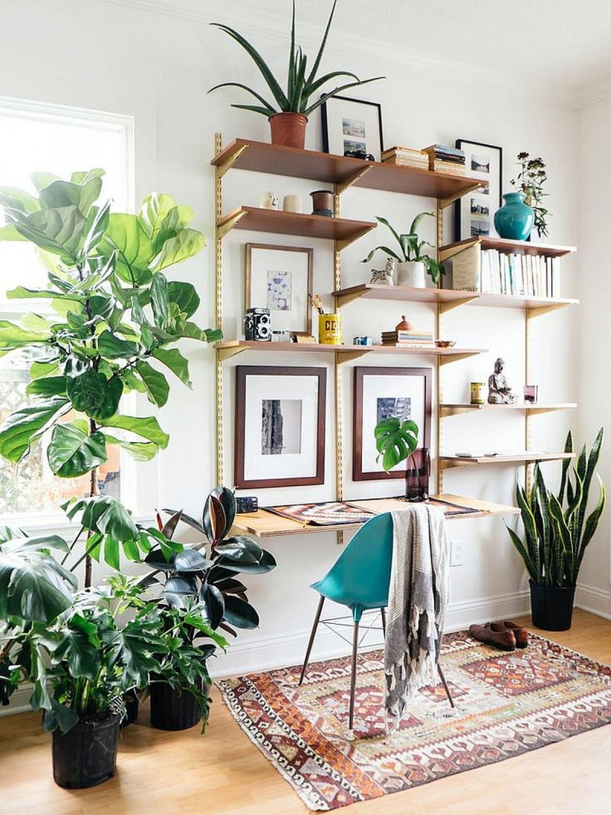 Ý tưởng về một không gian làm việc hiện đại, thanh lịch và tươi mới với cây xanh./.