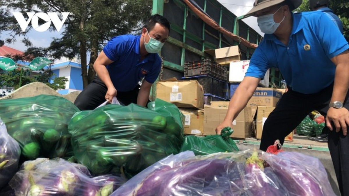 Tens of tons of vegetables and fruits from Lam Dong, Dong Nai, and Dong Thap are delivered to Ho Chi Minh City every day. (Photo: VOV)