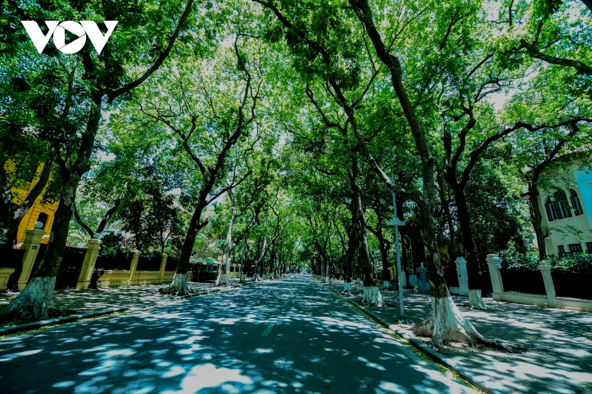 A similar view can be seen on Phan Dinh Phung and Hang Dau streets.