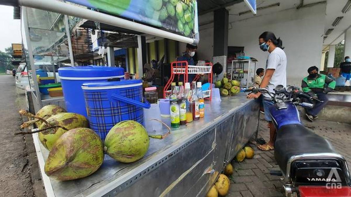 Giá dừa tại Indonesia tăng vọt sau tin đồn thất thiệt. Ảnh: CNA