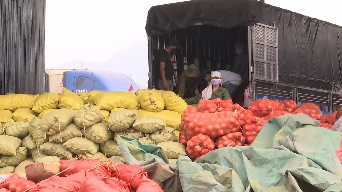 Lao động bốc vác, xe ôm ở Lào Cai bị nghỉ việc do COVID-19 sẽ được hỗ trợ.