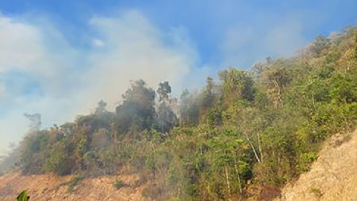 Một vụ cháy lớn tại khu vực rừng tự nhiên thuộc huyện Nông Sơn, tỉnh Quảng Nam.