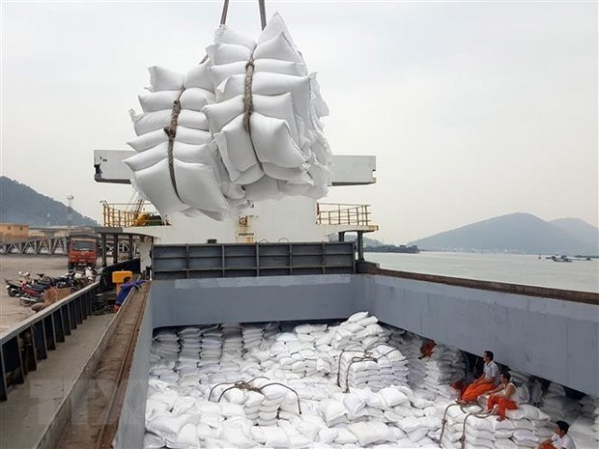 Rice is one of Vietnam's key export items to Africa. (Photo: VNA)
