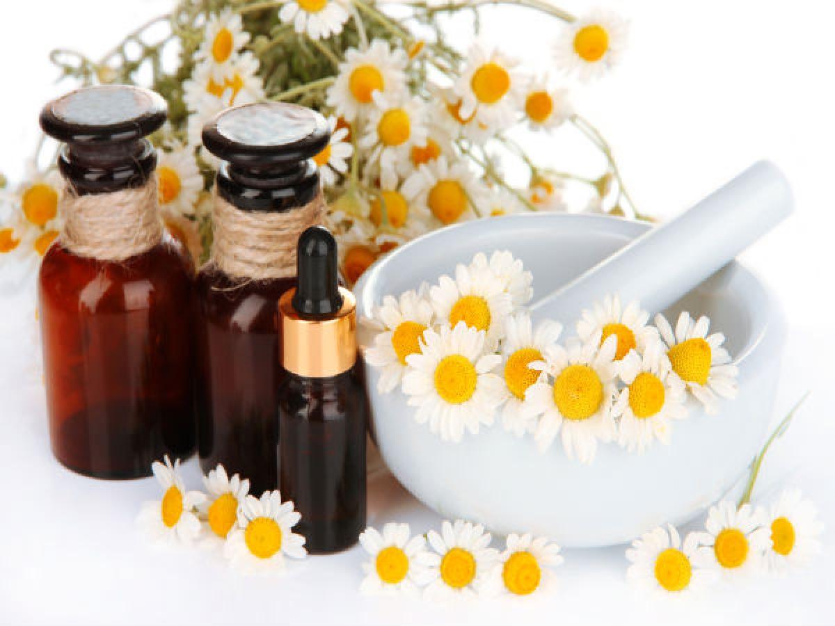 Hoa cúc: Hoa cúc có tính làm se, khử mùi và kháng khuẩn mạnh, nhờ đó có thể giúp đối phó với tình trạng đổ mồ hôi quá mức vào mùa hè. Loại thảo dược này còn có tác dụng tiêu diệt các vi khuẩn gây mùi cơ thể.