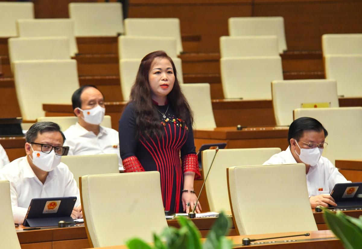 Đại biểu Vũ Thị Lưu Mai