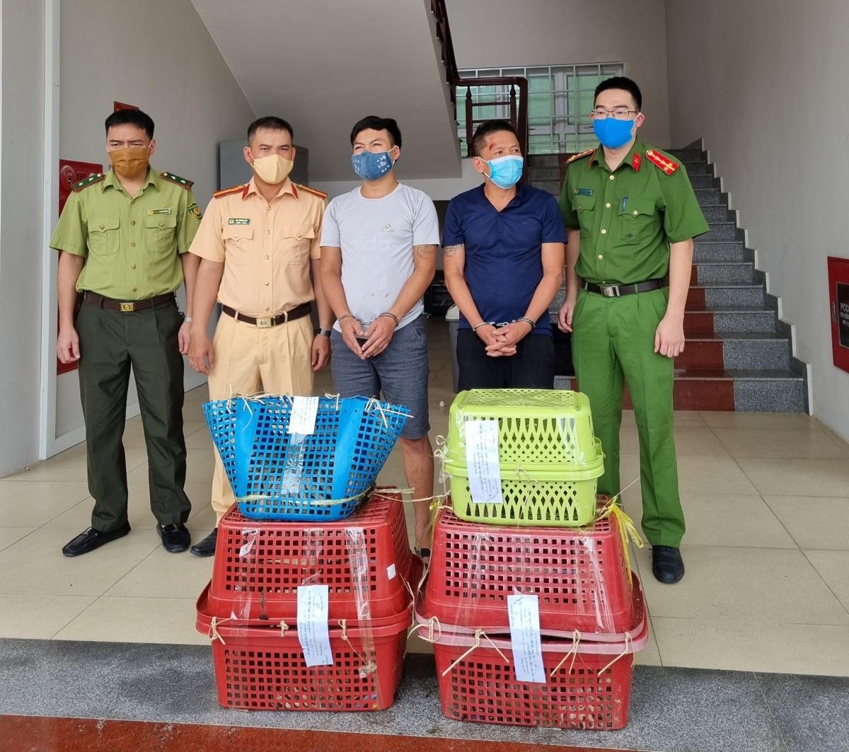 Như VOV.VN đã thông tin trước đó, vào rạng sáng 1/8, Phòng Cảnh sát môi trường Công an tỉnh Nghệ An chủ trì, phối hợp Trạm Cảnh sát giao thông Diễn Châu bắt giữ 2 đối tượng trên đường vận chuyển 7 cá thể hổ. 7 cá thể hổ được vận chuyển trên chiếc ô tô 7 chỗ.