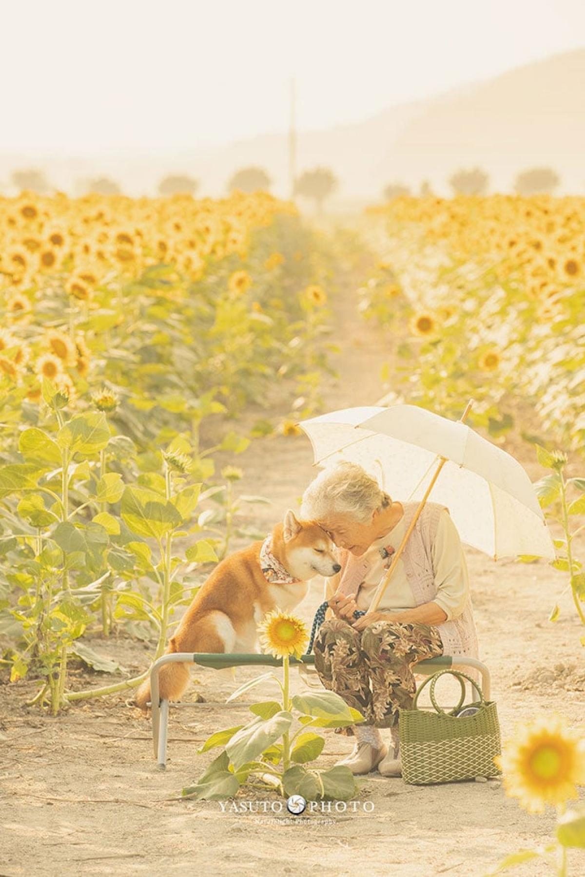 Nhiếp ảnh gia Yasuto chia sẻ, sau khi ông của anh mất, anh cảm thấy hối hận vì đã không thể lưu giữ nhiều bức ảnh của ông. Bởi vậy anh đã dành rất nhiều thời gian ở bên bà và chụp lại những khoảnh khắc cuộc sống của bà.