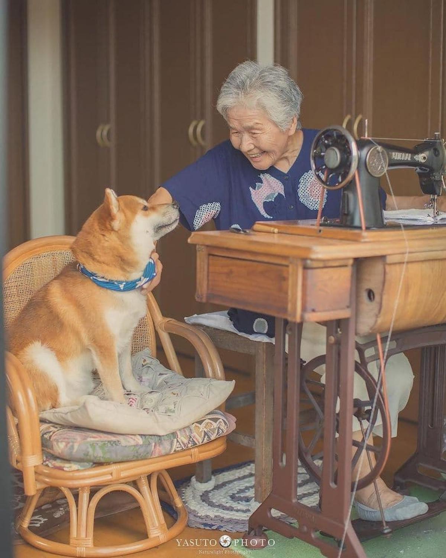 Bởi vậy, nuôi thú cưng cũng là một trong những biện pháp tốt. Những chú thú cưng sẽ làm bạn với người lớn tuổi và giúp họ vui vẻ hơn trong cuộc sống.