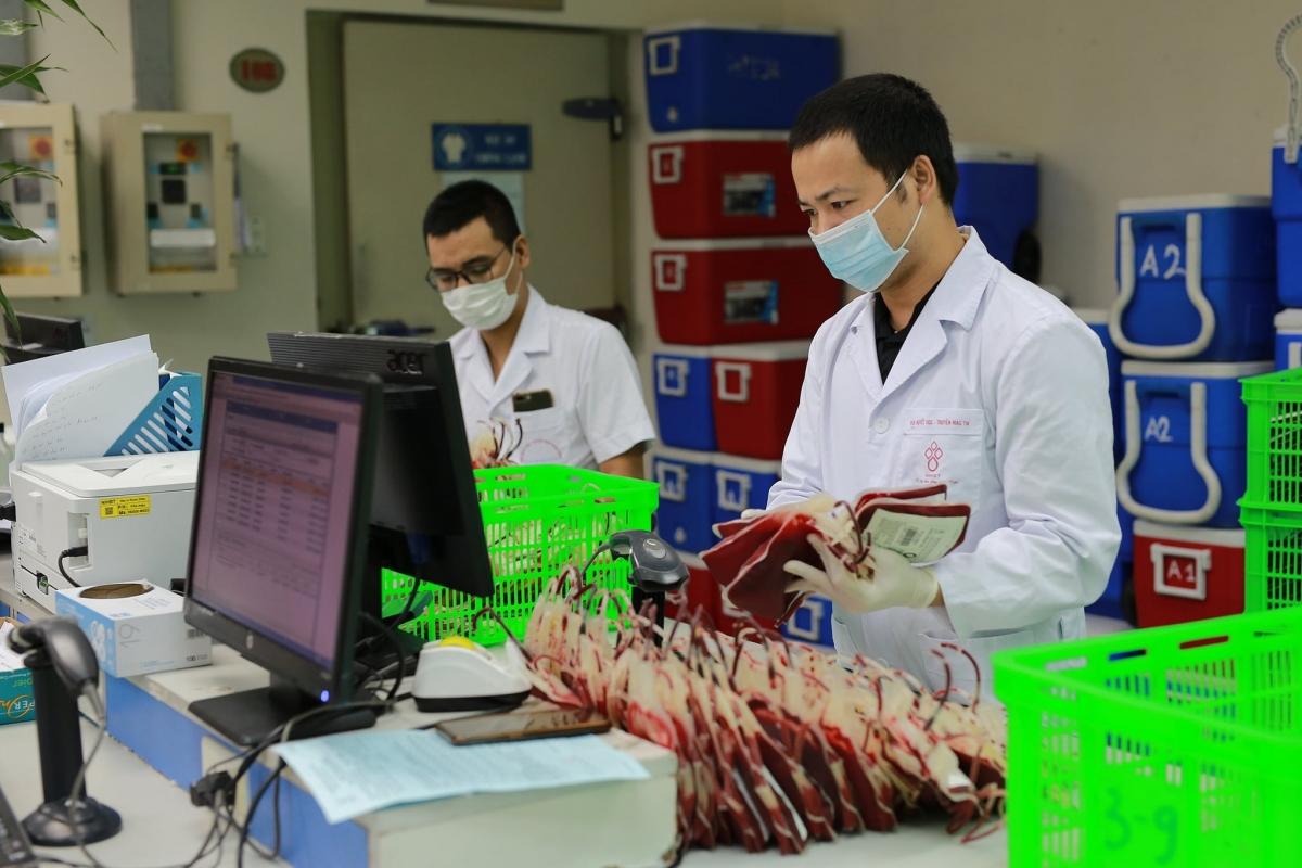 Nhân viên khoa Lưu trữ và phân phối máu của Viện Huyết học – Truyền máu TW chuẩn bị 1.000 đơn vị máu và đóng thùng đảm bảo tiêu chuẩn nhiệt độ để sẵn sàng chuyển cho Cần Thơ.