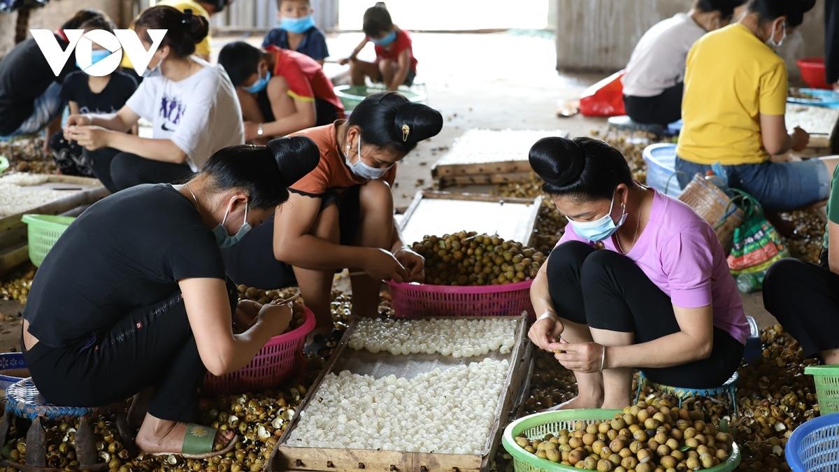 Bộ NN&PTNT đã đồng ý chủ trương phối hợp với Sơn La xây dựng vùng nguyên liệu nông sản gắn với nhà máy chế biến.