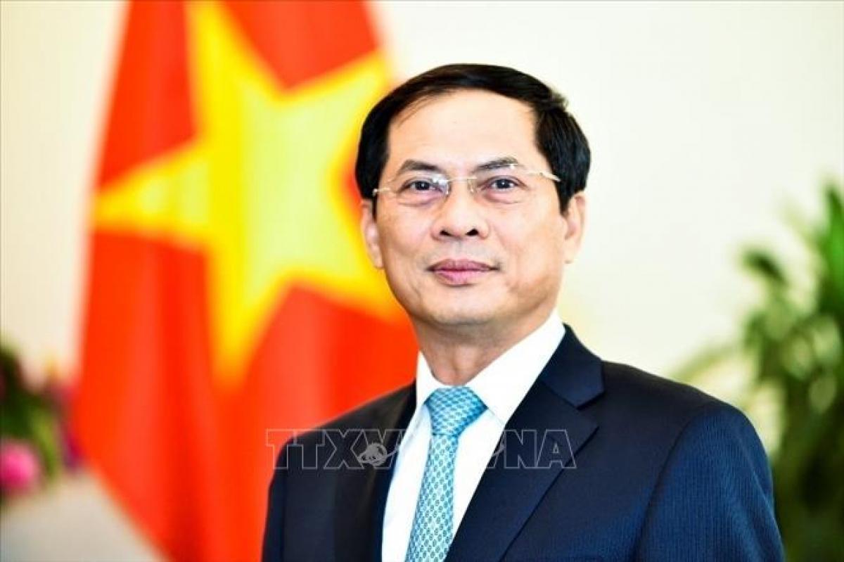 Bộ trưởng Bộ Ngoại giao Bùi Thanh Sơn. (Ảnh: TTXVN)