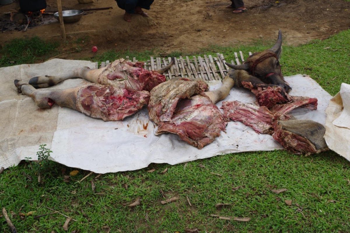 Thịt, xương trâu nhóm đối tượng để lại tại hiện trường.