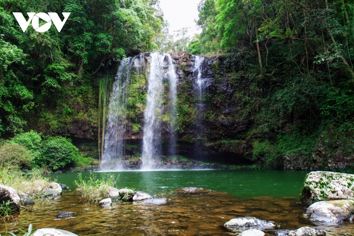 12 waterfalls are located in Kon Chu Rang Nature Reserve alone, all of which stand at over 15 metres in height, thereby leaving an impression of wild and poetic beauty among visitors.