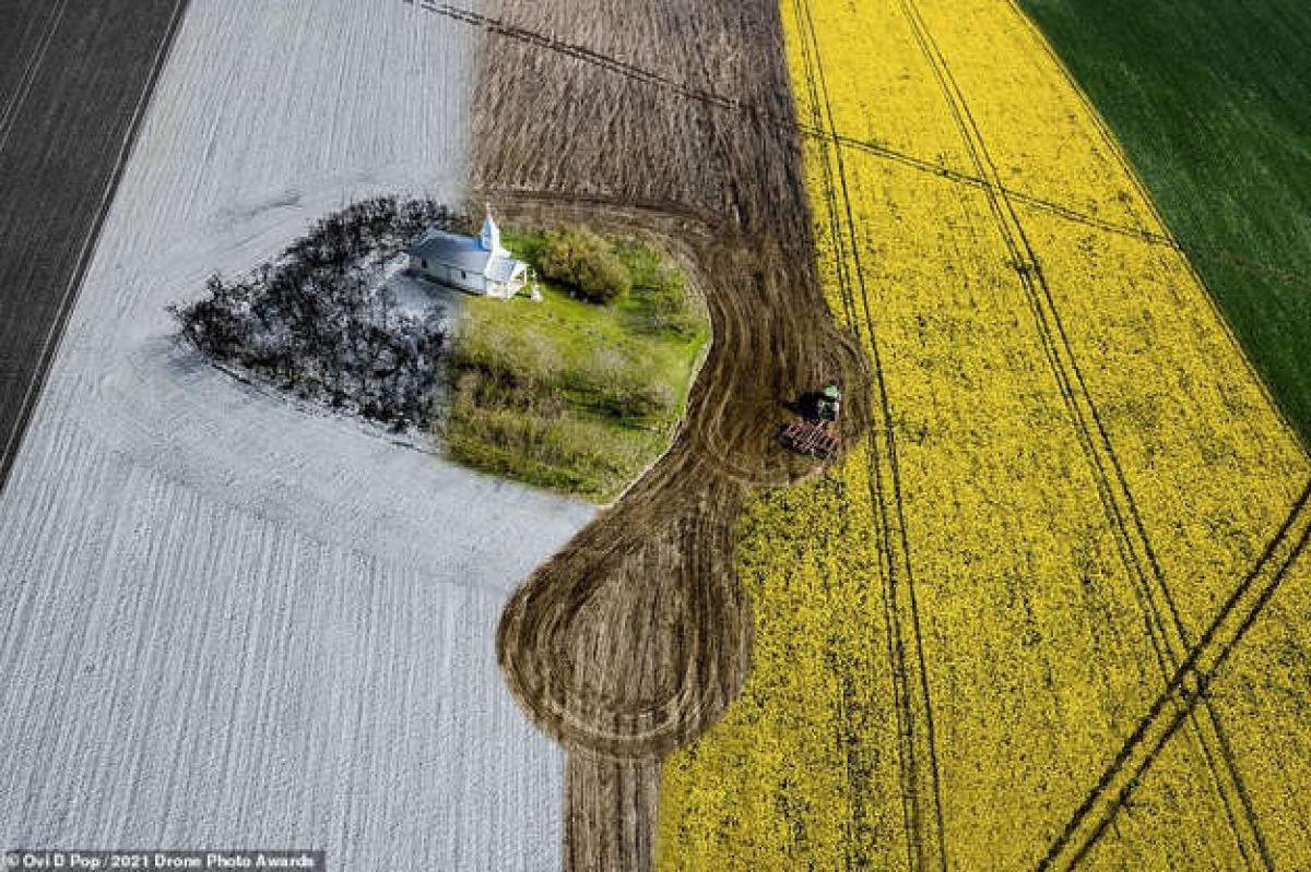 Bức ảnh ấn tượng này nằm trong loạt ảnh của nhiếp ảnh gia Ovi D Pop cho thấy một nhà nguyện nằm lẻ loi giữa cánh đồng ở Kigyei Kapolna, Romania./.