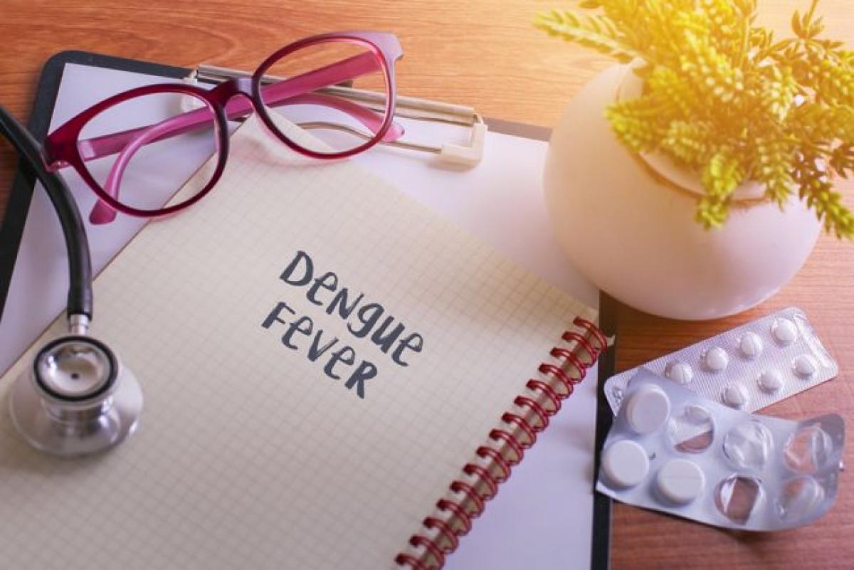 Chảy máu mũi và lợi: Một số bệnh nhân sốt xuất huyết cũng có thể bị chảy máu mũi và chảy máu lợi. Trong hầu hết các ca bệnh, tình trạng chảy máu mũi thường không nghiêm trọng, nhưng có thể lặp lại thường xuyên. Tuy nhiên, trong một số ca hiếm, tình trạng chảy máu mũi có thể nghiêm trọng tới mức người bệnh cần được truyền máu.