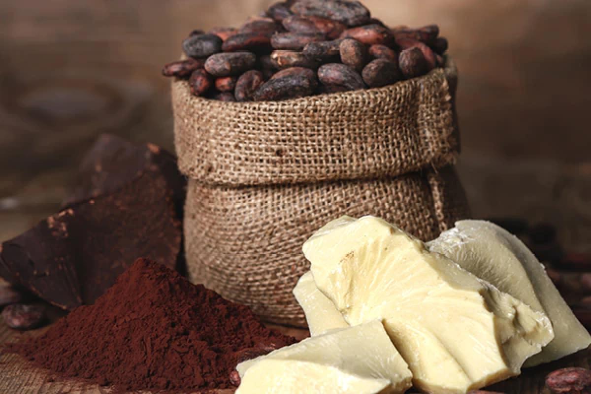 Bơ cacao: Bơ cacao giàu các thành phần hoạt tính sinh học giúp bảo vệ khỏi tổn thương do tia UV gây ra, thậm chí chữa lành các tổn thương vốn có, đồng thời giảm tình trạng mất cân bằng melanin gây ra tàn nhang. Bạn hãy lấy hai thìa cà phê bơ cacao, thoa nhẹ nhàng lên da và mát-xa, sau đó để qua đêm. Khi ngủ dậy, bạn hãy xả sạch với nước ấm.