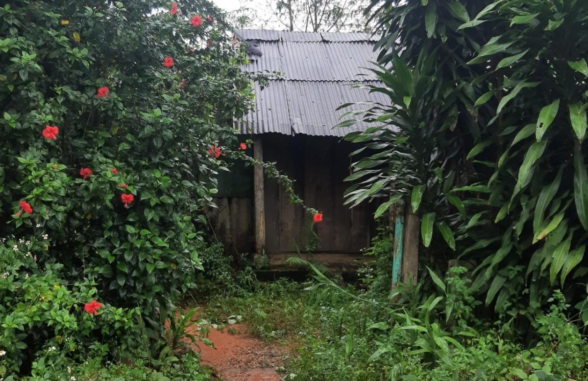 Căn chòi trông rẫy ở phía Nam xã Hà Lâm