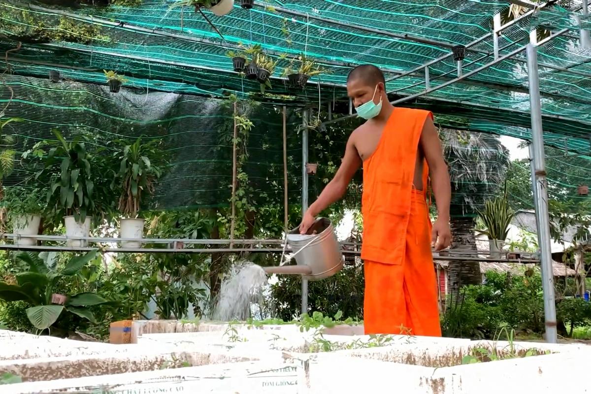 Nhà sư Khmer tăng gia sản xuất, tự cung tự cấp hạn chế ra ngoài trong mùa dịch.