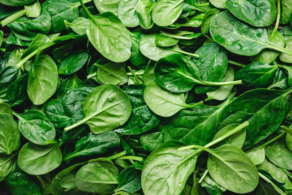 Rau chân vịt: Giống như củ dền, rau chân vịt cũng là một thực phẩm giàu nitrate mà bạn nên ăn ngay sau khi nấu chín. Để ngăn các nitrate trong rau chân vịt chuyển hóa thành chất gây ung thư, bạn nên ăn rau sống hoặc ăn ngay sau khi áp chảo.