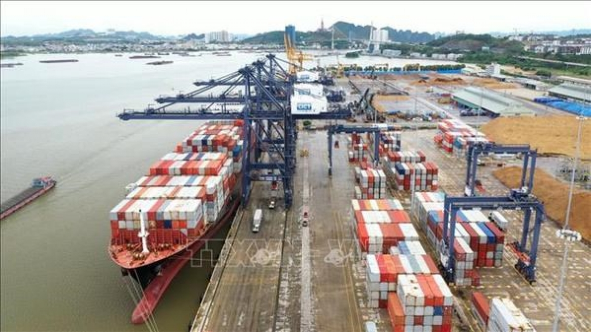 Marshall Islands-flagged Synergy Busan, with a loading capacity of over 50,000 tonnes, docks at Cai Lan port in the northern province of Quang Ninh.