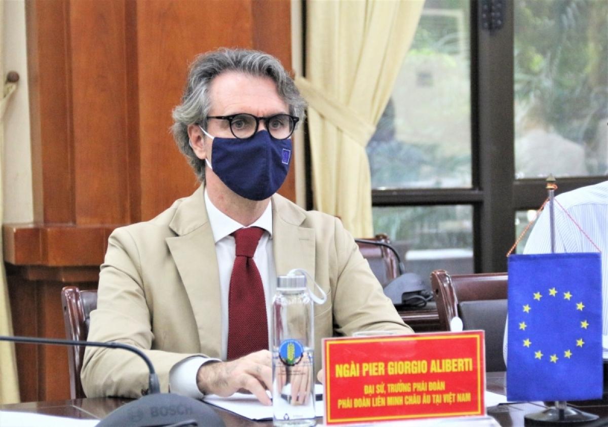 Đại sứ, Trưởng phái đoàn Liên minh Châu Âu tại Việt Nam