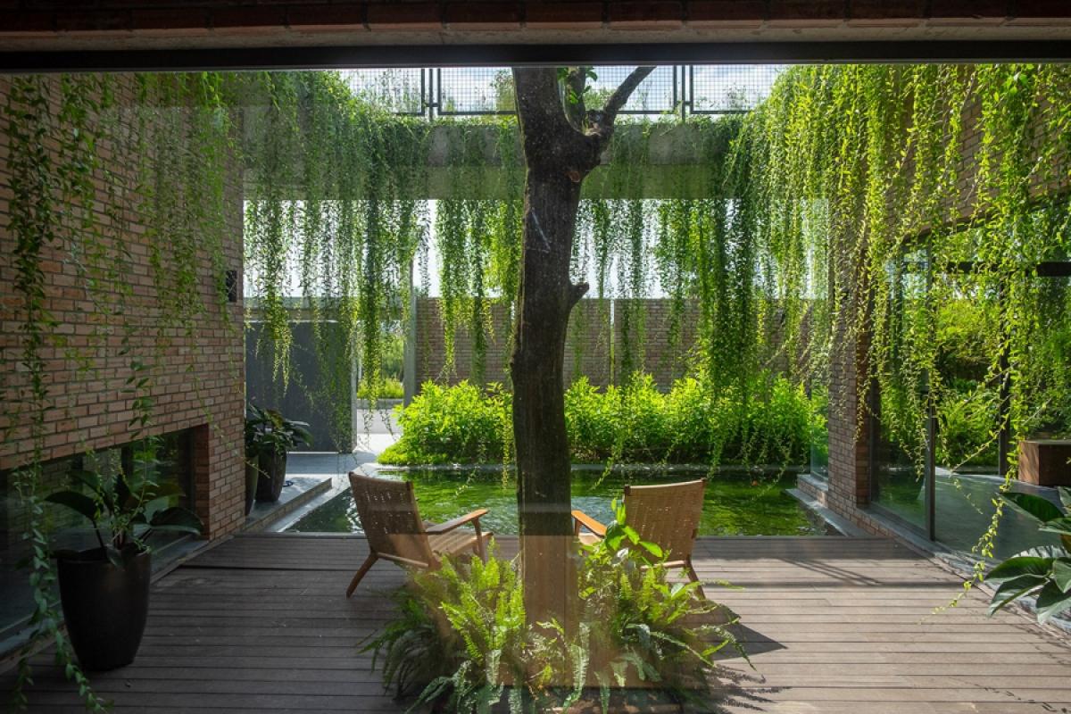 Góc nhìn từ phòng bếp ra khoảng sân trung tâm. Cây xanh đem lại cho ngôi nhà một hình ảnh tươi mát đầy sức sống.