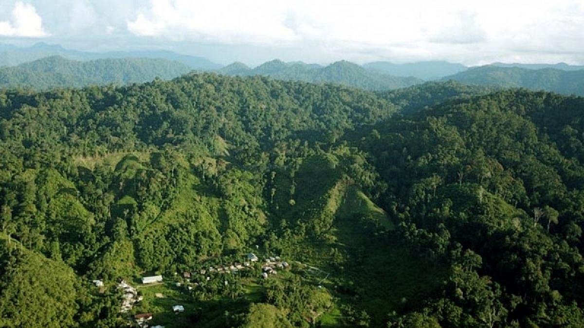 Indonesia xây công viên công nghiệp xanh tại Bắc Kalimantan Ảnh: Antara