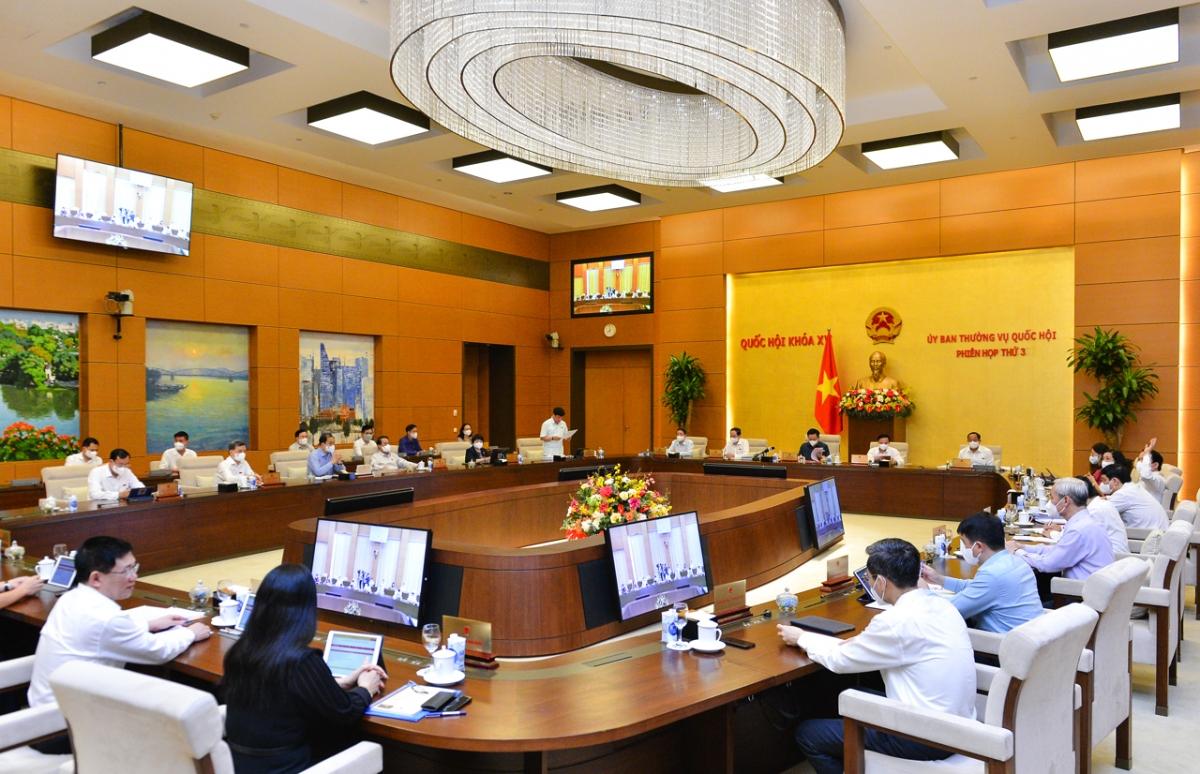 Phiên họp thứ 3, Ủy ban Thường vụ Quốc hội khóa XV.
