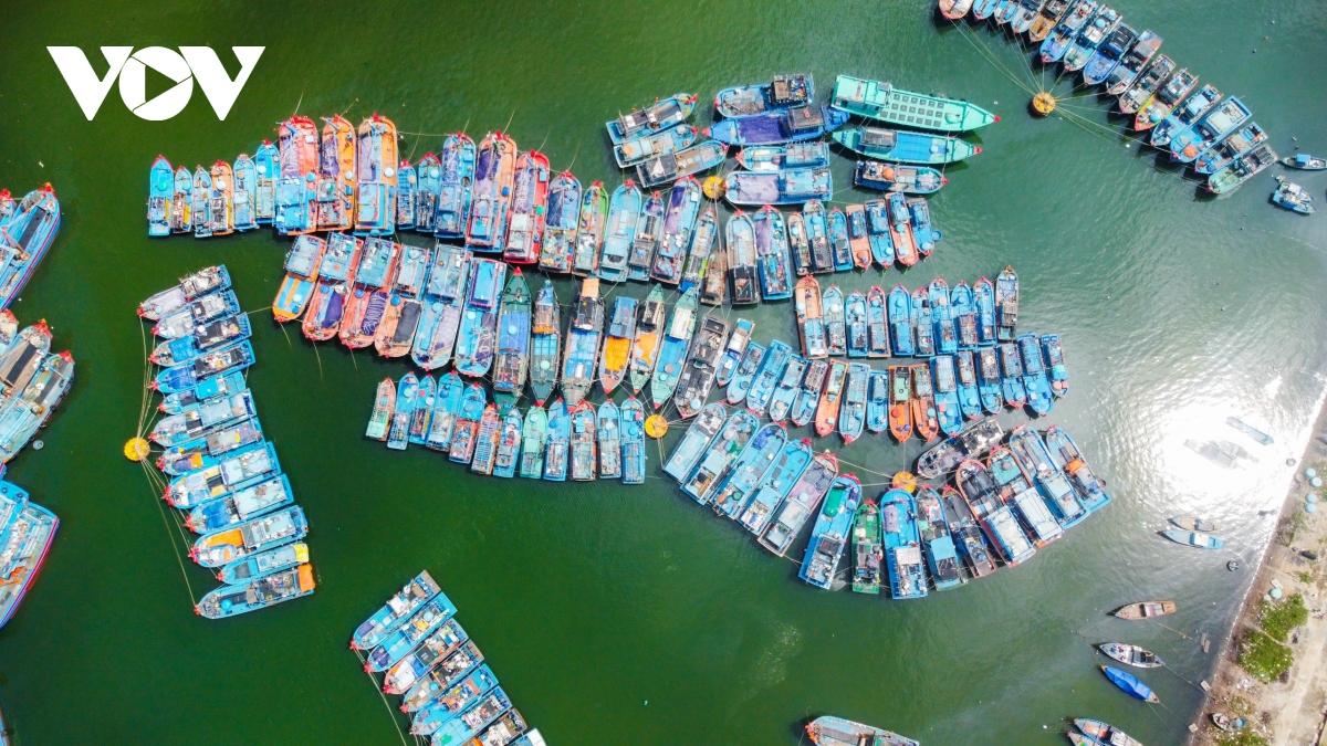 Tại Thành phố Đà Nẵng, trước diễn biến phức tạp của bão số 9, Bộ Chỉ huy Bộ đội Biên phòng Thành phố đã nghiêm cấm tàu thuyền ra khơi; tổ chức kiểm đếm và giữ liên lạc hướng dẫn các tàu thuyền còn trên biển tìm nơi tránh trú an toàn.