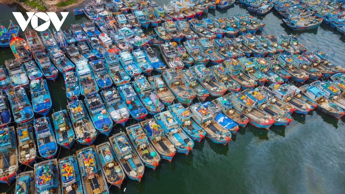 Bộ đội Biên phòng cũng phối hợp với các đơn vị hướng dẫn, sắp xếp tàu thuyền neo đậu an toàn tại Âu thuyền Thọ Quang và vịnh Mân Quang.