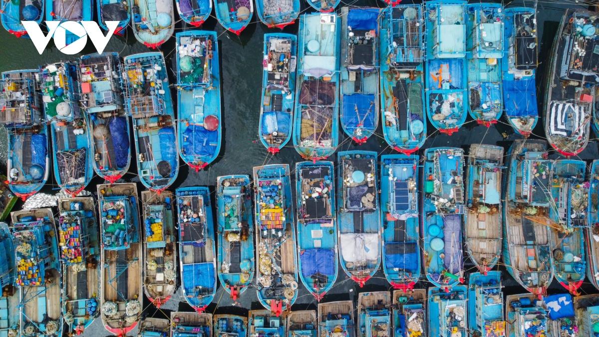 Hình ảnh tàu thuyền neo đậu ngăn nắp tại âu thuyền Thọ Quang.