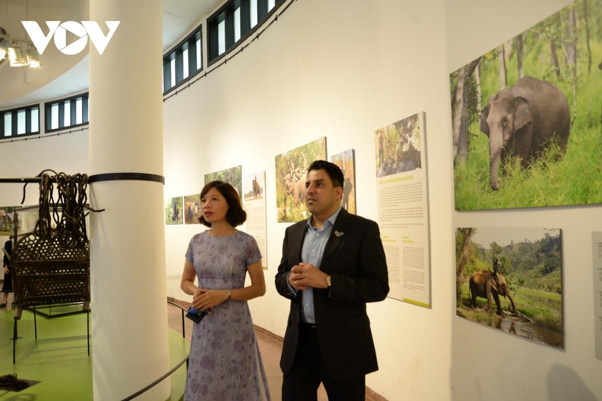 Đại sứ tham quan khu Trưng bày hình ảnh Voi ở Tây Nguyên tại bảo tàng, tìm hiểu về những tập quán, nghi lễ liên quan đến việc bắt, thuần dưỡng, chăm sóc cũng như giá trị của voi trong đời sống văn hóa xã hội của một số dân tộc ở Tây Nguyên.