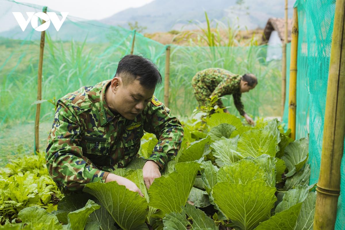 Trồng rau xanh ngay ven chốt gác, xác định chống dịch như chống giặc, phải kháng chiến trường kì.