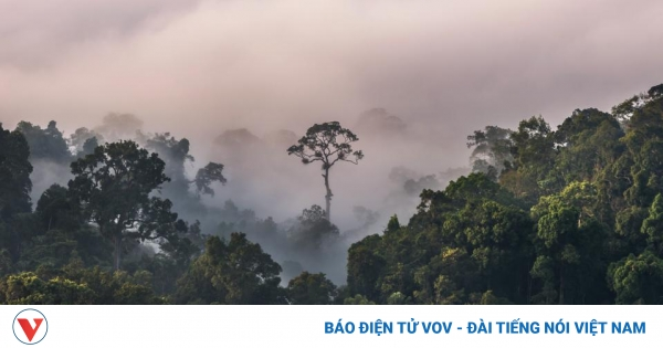 5 công viên quốc gia hùng vĩ nhất định phải tới thăm tại Thái Lan
