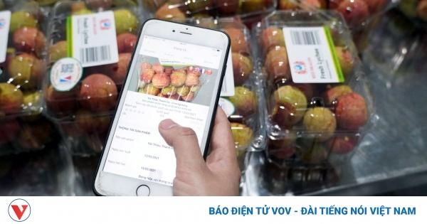 Quả vải Thanh Hà lên sàn thương mại điện tử: Quyết sách đúng đắn   VOV.VN